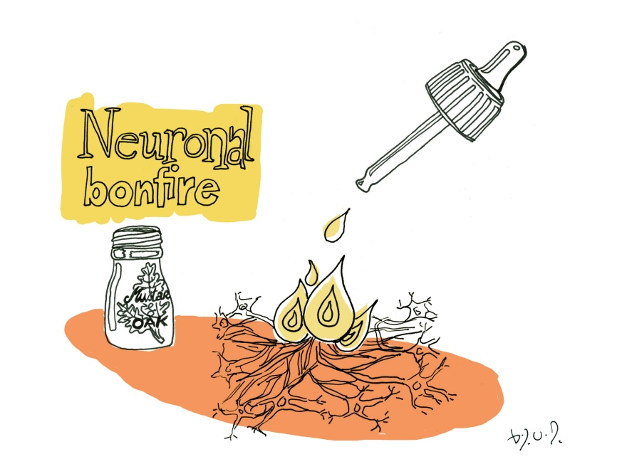 Neuronal bonfire