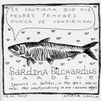 mof_sardina